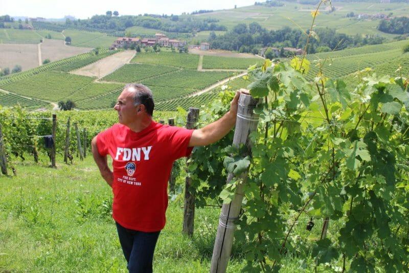 Renato Corino in the Arborina vineyard 2016