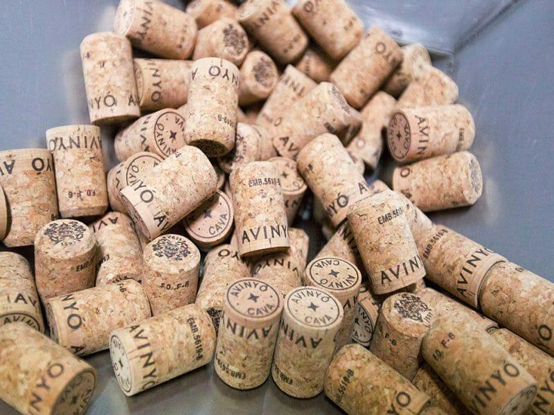 Corks <br>Photo by Zoe Dehmer