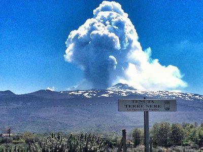 MT Etna eruption from Don Peppino Prephylloxera vineyard