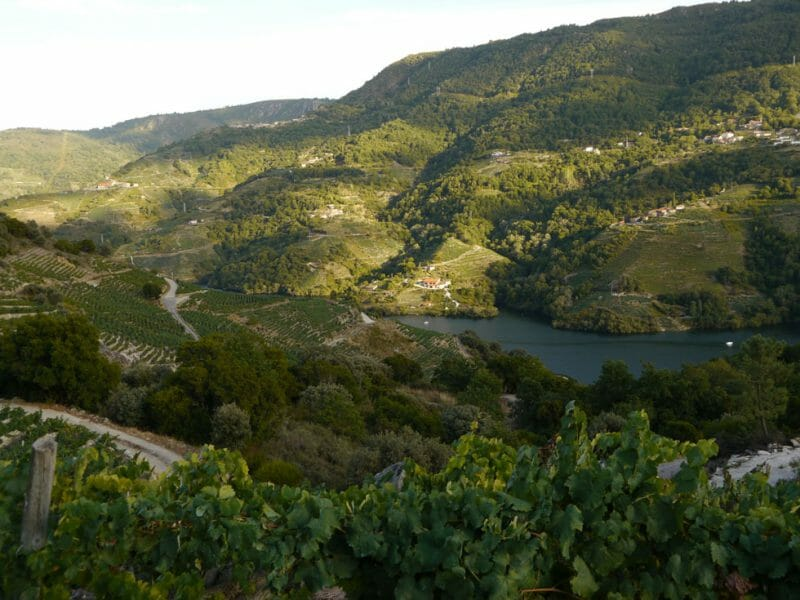 Ribeira Sacra <br>Photo by Steven Alexander